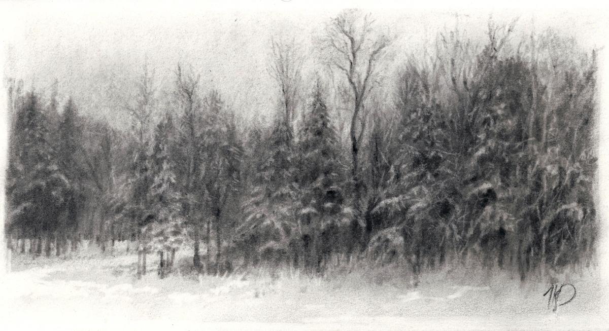 Adirondack Winter, 2
